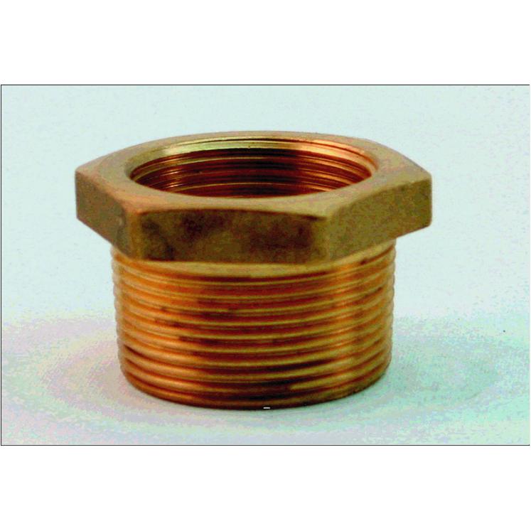 Brass reducer bush ¼ quot
