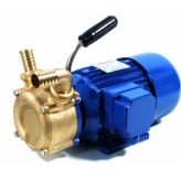 Surface Mounted Low Voltage Pumps