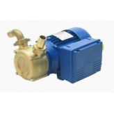 Reversible Transfer Electric Self Priming Centrifugal Pumps