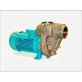 GMP Bronze Self Priming Centrifugal Pumps