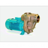 GMP Bronze Surface Mounted Pumps